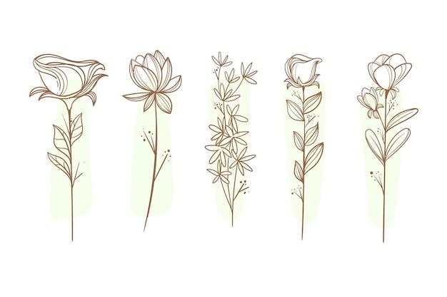 Coleção de flores desenhadas à mão