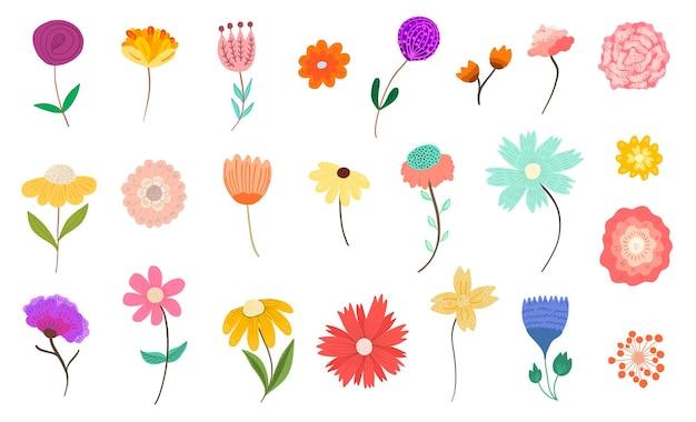 Coleção de flores e flores