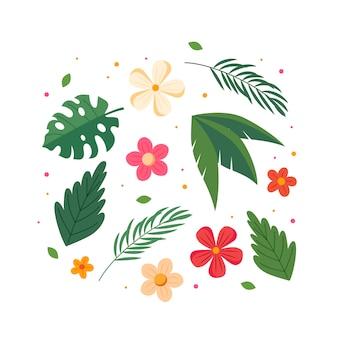 Coleção de flores e folhas de verão.