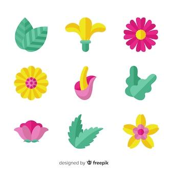 Coleção de flores e folhas plana colorida