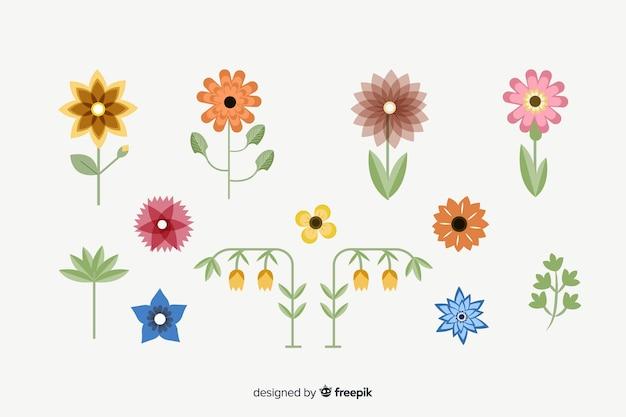 Coleção de flores e folhas planas