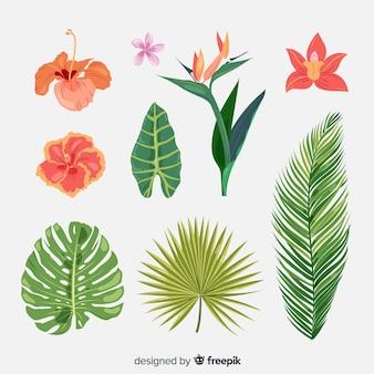 Coleção de flores e folhas tropicais