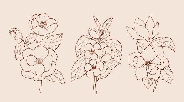 Coleção de flores elegantes desenhadas à mão