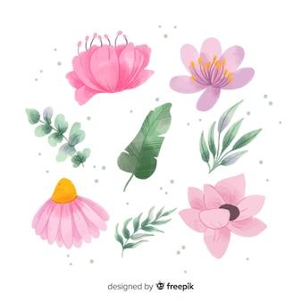 Coleção de flores em aquarela e folhas