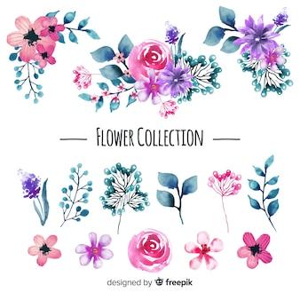 Coleção de flores em aquarela