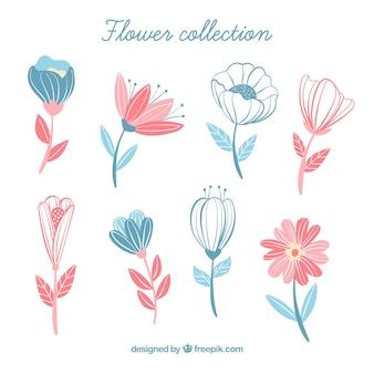 Coleção de flores em estilo desenhado a mão