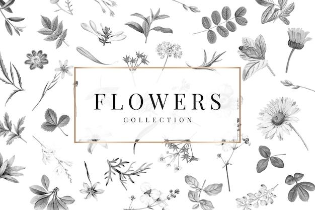 Coleção de flores em um fundo branco