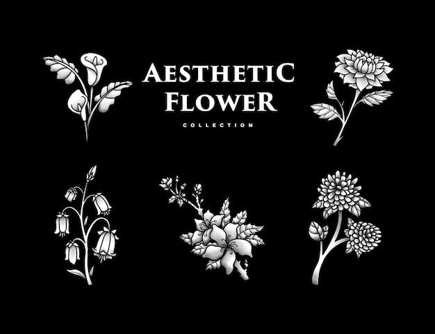 Coleção de flores estéticas