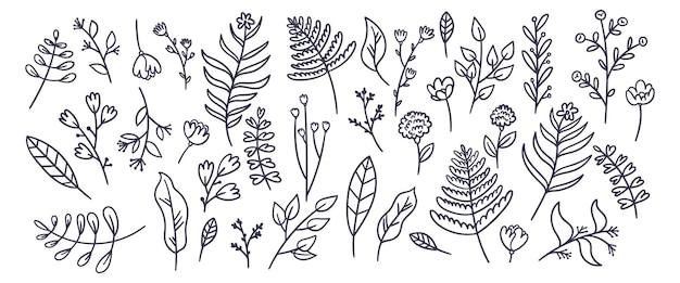 Coleção de flores lineares desenhadas à mão