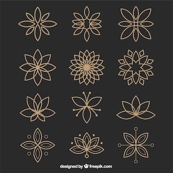 Coleção de flores ornamentais no estilo geométrico