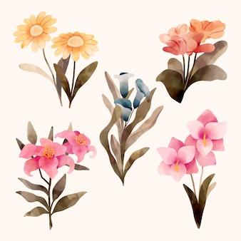 Coleção de flores pintadas à mão Vetor Premium