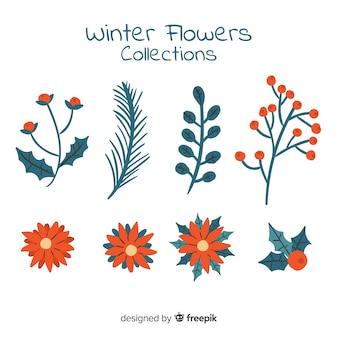 Coleção de flores planas de inverno