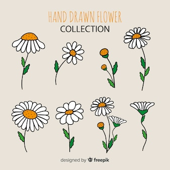 Coleção de flores