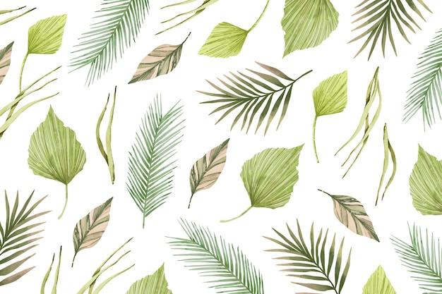Coleção de folhas de design tropical