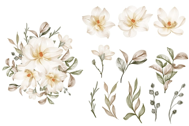 Coleção de folhas de flores de magnólia brancas elegantes isoladas