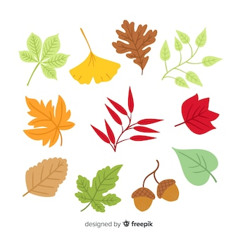 Coleção de folhas de outono desenhada de mão