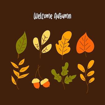 Coleção de folhas de outono desenhadas à mão
