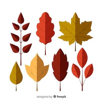 Coleção de folhas de outono design plano