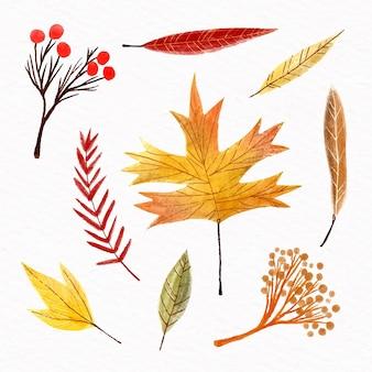 Coleção de folhas de outono em aquarela