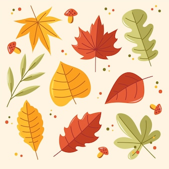 Coleção de folhas de outono Vetor grátis