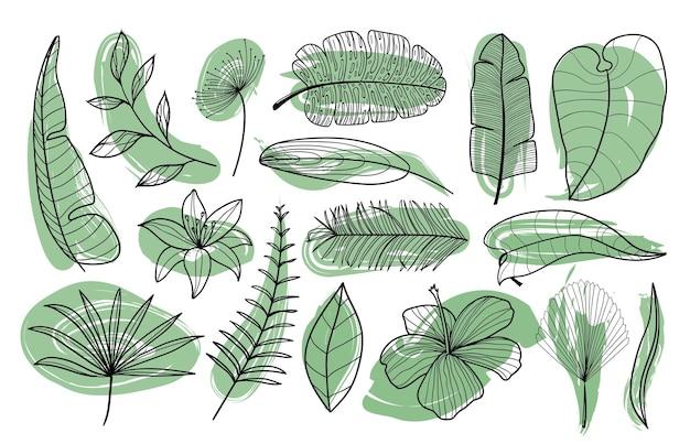 Coleção de folhas de palmeira exóticas tropicais contorno de folhas de palmeira desenhada à mão em cores preto e branco