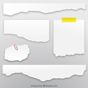 Coleção de folhas de papel rasgado