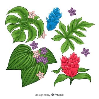 Coleção de folhas e flores tropicais
