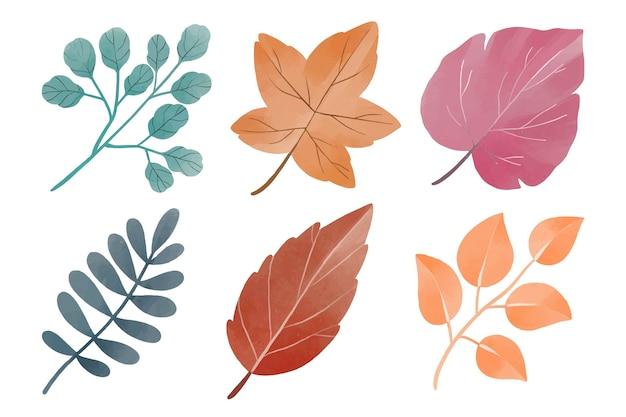 Coleção de folhas em aquarela