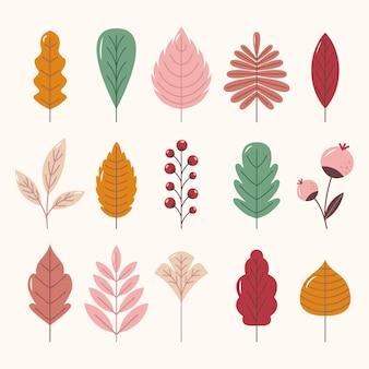 Coleção de folhas planas de outono