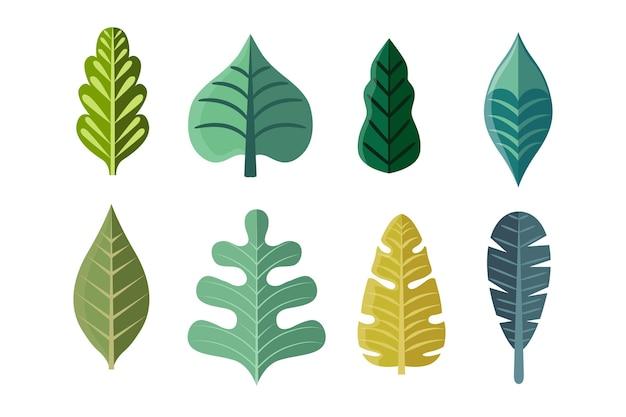 Coleção de folhas verdes de design plano