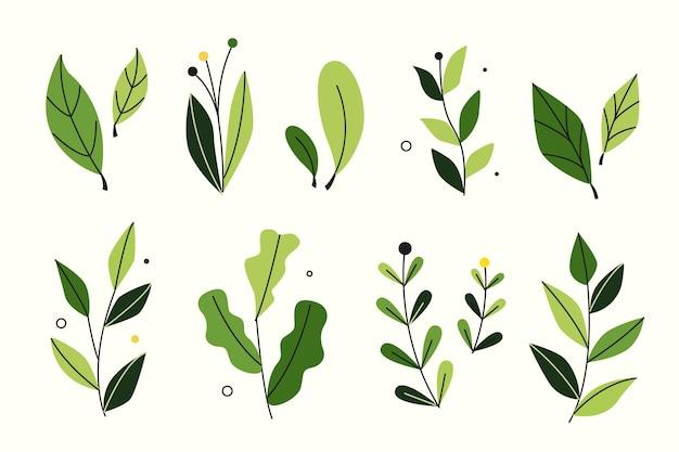 Coleção de folhas verdes de estilo simples