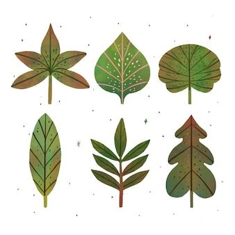 Coleção de folhas verdes desenhada à mão
