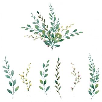 Coleção de folhas verdes