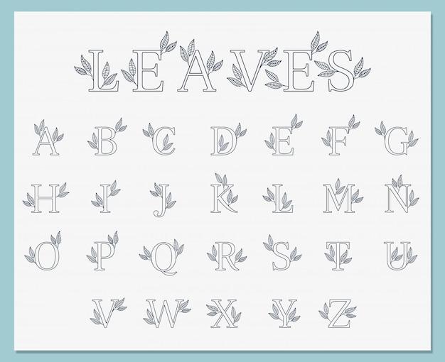 Coleção de fontes botânicas de folhas simples linha arte
