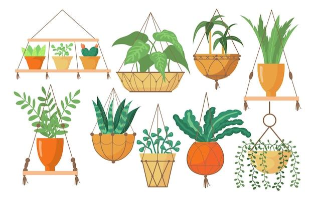 Coleção de fotos planas de cabides brilhantes e criativos para plantas em vasos