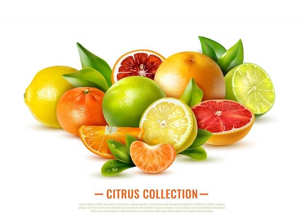Coleção de frutas cítricas em branco