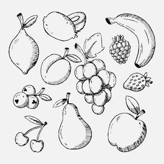 Coleção de frutas desenhadas à mão gravada