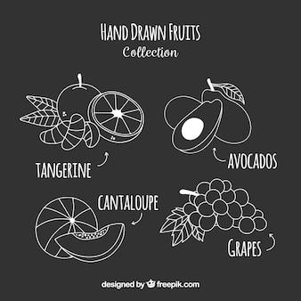 Coleção de frutas desenhadas à mão
