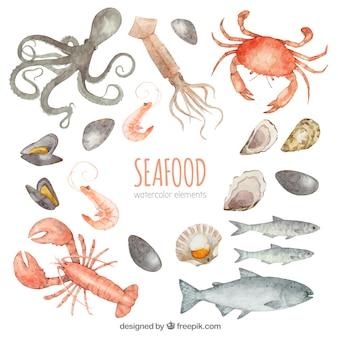 Coleção de frutos do mar em aquarela