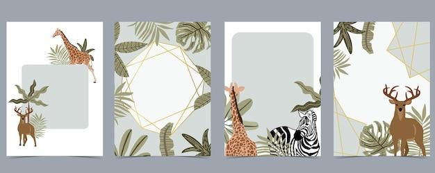 Coleção de fundo de cartões postais safari com girafas, zebras e mais animais selvagens