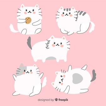 Coleção de gato adorável mão desenhada