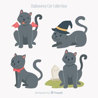 Coleção de gato halloween em poses diferentes