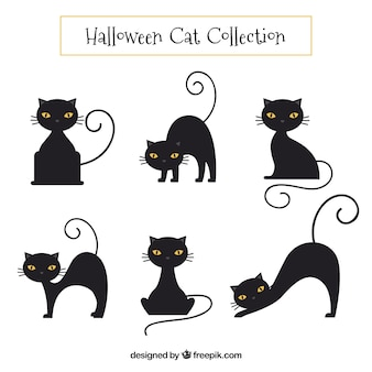 Coleção de gato preto Vetor grátis