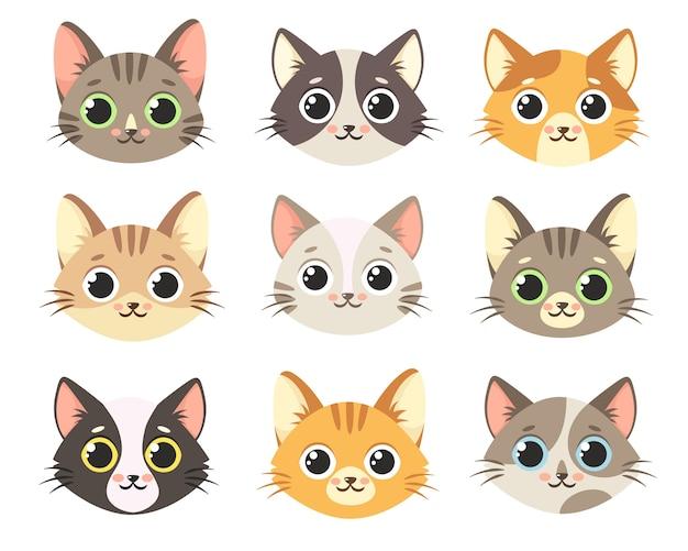 Coleção de gatos bonitos. rostos de gatos.