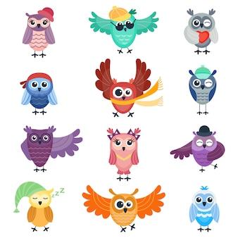 Coleção de giro do vetor de corujas dos desenhos animados. caráter animal dos desenhos animados coruja coleção engraçada em quadrinhos
