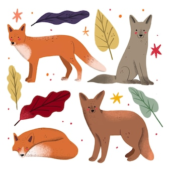 Coleção de giro mão desenhada raposas