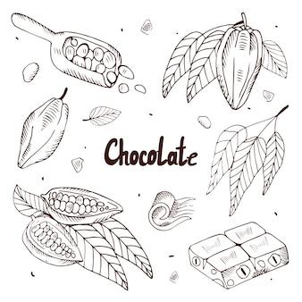 Coleção de grãos de cacau e chocolate em um fundo branco. ilustração com gravura.