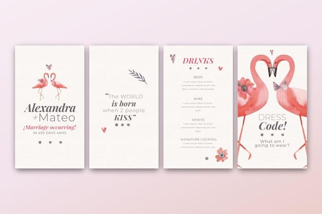 Coleção de histórias do instagram para casamento com flamingos