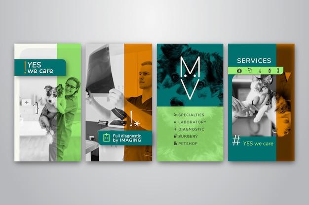 Coleção de histórias do instagram para empresas veterinárias