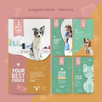 Coleção de histórias do instagram para veterinários